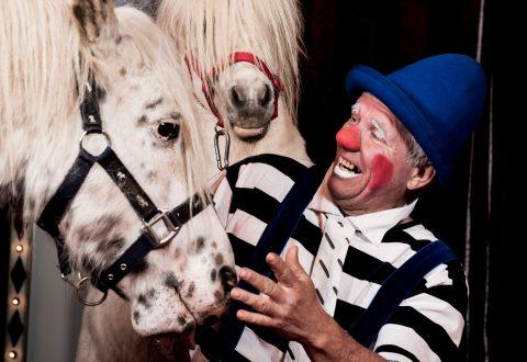 Så er der cirkus i byen