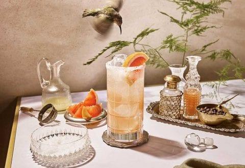 Pressefoto: Hendrick's Gin